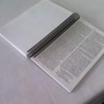 Blank Bible (9)