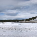 4 - Yellowstone, January 14th (10)