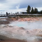 4 - Yellowstone, January 14th (20)