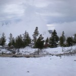 4 - Yellowstone, January 14th (24)