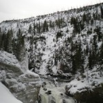 4 - Yellowstone, January 14th (26)