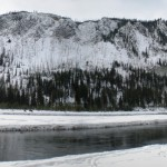 4 - Yellowstone, January 14th (4)